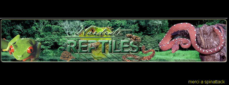 NORDISTE-REPTILES Index du Forum