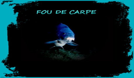 Fou de Carpe Forum Index