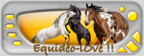 Equidéo-lOve Index du Forum