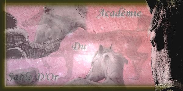  ~♥~  Académie du Sable d'Or  ~♥~  Index du Forum