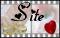 Visiter le site web du posteur